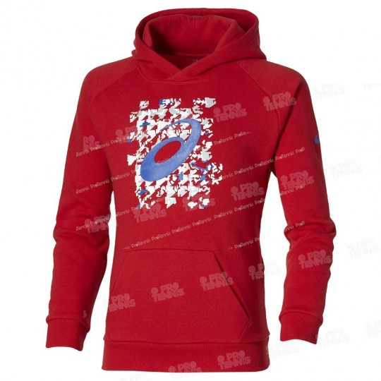 ASICS JUNIOR GRAPHIC SWEAT ROUGE